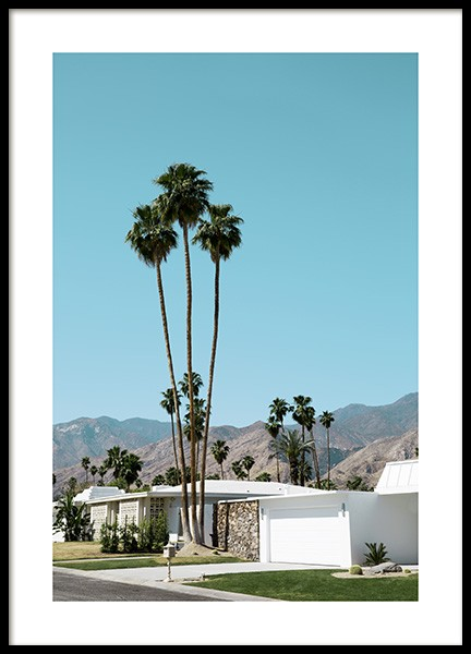 Street of Palm Springs Poster en el grupo Studio Collections / Studio Coast to Coast / Palm Springs con Desenio AB (10790)