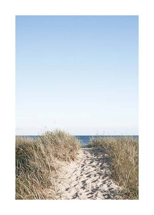 Path on beach Poster / Naturaleza con Desenio AB (10477)