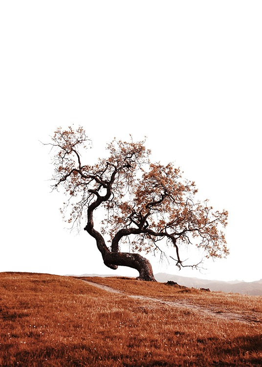 Tree on Hill Poster / Naturaleza con Desenio AB (11869)