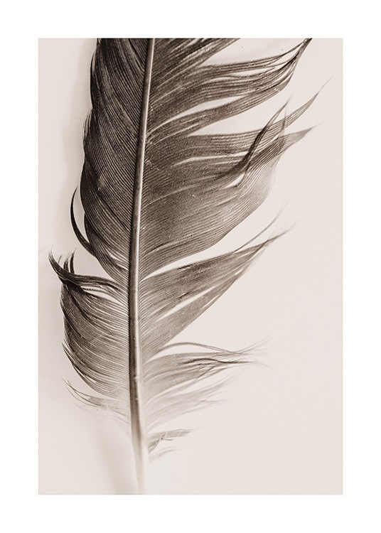 Feather Beige Poster / Naturaleza con Desenio AB (13646)