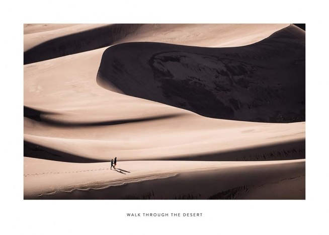 Walk Through The Desert Poster / Naturaleza con Desenio AB (2024)