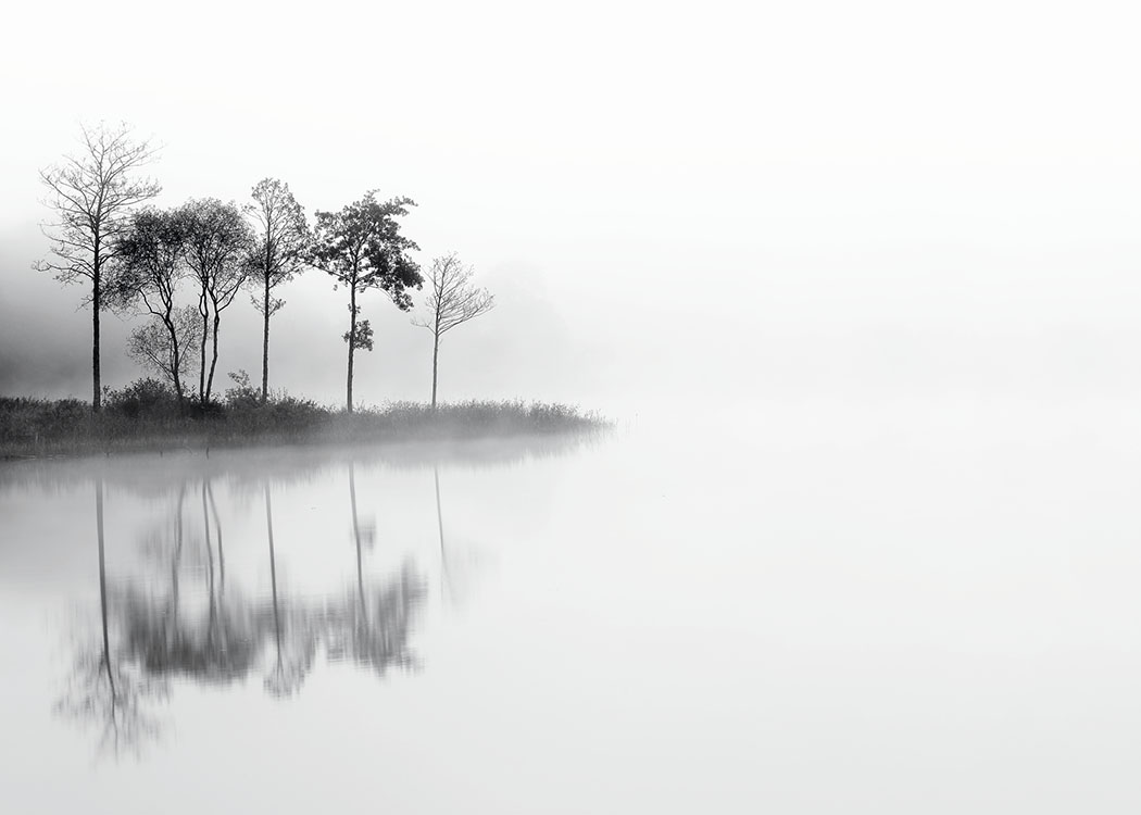 Lake And Trees, Poster / Blanco y negro con Desenio AB (8117)