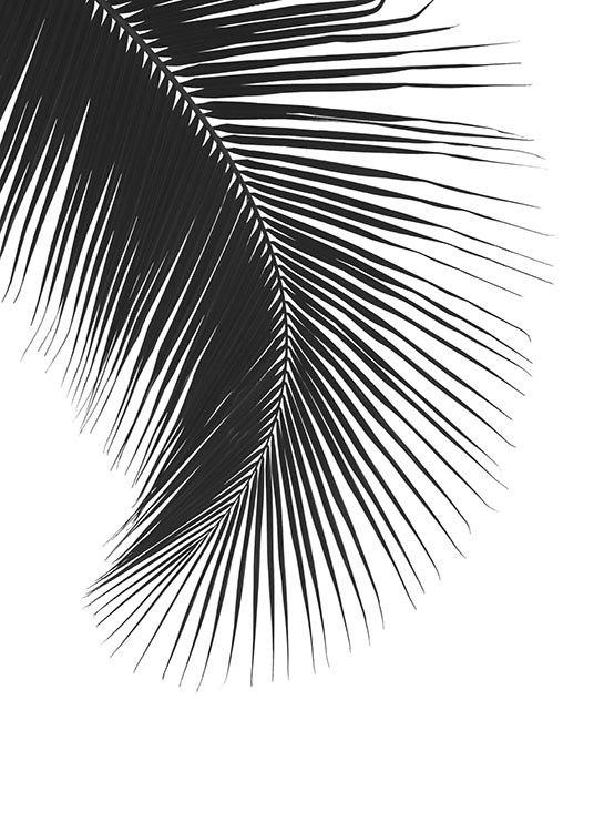 Poster con foto en blanco y negro para decoraci n cuadro for Best black and white prints
